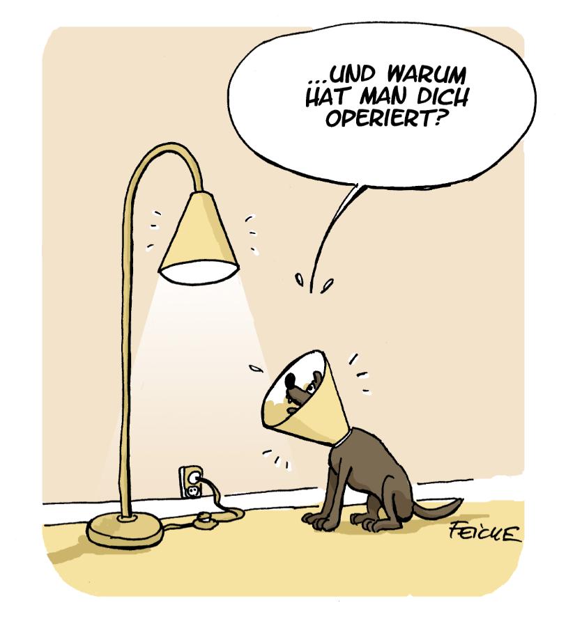 FEICKE - Auch operiert