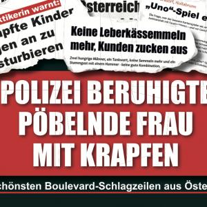 Polizei beruhigte pöbelnde Frau mit Krapfen Die schönsten Boulevard-Schlagzeilen aus Österreich Holzbaum Verlag