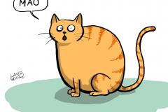 Dorthe Landschulz - chinesische Katze